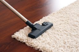 CARPET CLEANING - SSMDRemovals